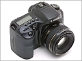 Canon EOS 10D Digital Imaging!